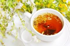 Taza de infusión de hierbas con las flores en el fondo blanco Imagenes de archivo