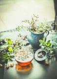 Taza de infusión de hierbas con las herramientas del té y la planta fresca de las hierbas en la tabla de la terraza o del jardín Imagen de archivo libre de regalías