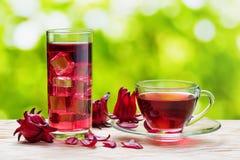 Taza de karkade caliente del té del hibisco y de la misma bebida fría imagen de archivo libre de regalías