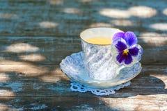 Taza de la porcelana de té en una tabla de madera en el jardín Partido del verano Fotografía de archivo
