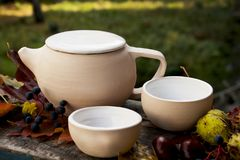 Taza de la tetera del juego de té de té blanco fotos de archivo libres de regalías