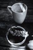Taza de leche del chocolate caliente Fotos de archivo