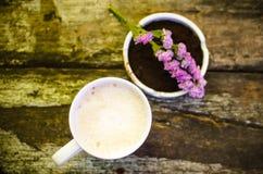 Taza de leche del chocolate caliente Fotografía de archivo
