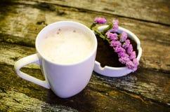 Taza de leche del chocolate caliente Imagen de archivo libre de regalías