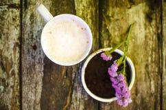 Taza de leche del chocolate caliente Foto de archivo