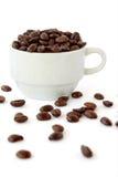 Taza de los granos de café fotografía de archivo libre de regalías