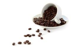 Taza de los granos de café Fotos de archivo
