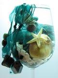 Taza de mar Foto de archivo libre de regalías