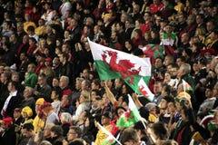 Taza de mundo del rugbi Australia 2011 contra País de Gales Imagen de archivo libre de regalías