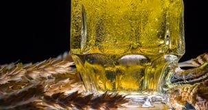 Taza de oídos de la cerveza y del grano almacen de metraje de vídeo