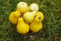 Taza de peras amarillas maduras fotografía de archivo