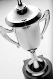 Taza de plata del trofeo, opinión de alto ángulo Imagen de archivo