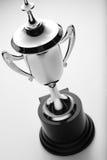 Taza de plata del trofeo, opinión de alto ángulo Fotos de archivo