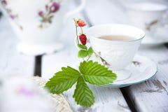 Taza de té. Fotos de archivo libres de regalías