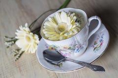 Taza de té antigua con las flores amarillas de la margarita Fotos de archivo