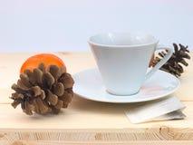 Taza de té blanca Fotografía de archivo libre de regalías