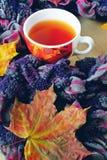 Taza de té bufanda Fotos de archivo