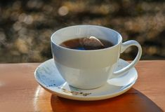 Taza de té caliente Fotos de archivo libres de regalías