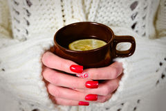 Taza de té caliente Imagen de archivo libre de regalías
