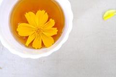 Taza de té caliente colocada Imágenes de archivo libres de regalías