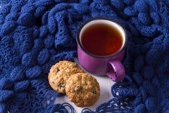 Taza de té caliente, de galletas de harina de avena y de bufanda caliente Fotos de archivo libres de regalías