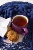 Taza de té caliente, de galletas de harina de avena y de bufanda caliente Foto de archivo libre de regalías