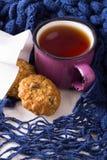 Taza de té caliente, de galletas de harina de avena y de bufanda caliente Fotografía de archivo libre de regalías