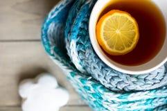 Taza de té caliente en el tiempo frío Imagenes de archivo