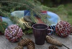 Taza de té caliente en una tabla de madera rústica Fotos de archivo libres de regalías