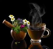 Taza de té caliente y mortero con las hierbas Foto de archivo libre de regalías