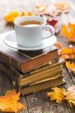 Taza de té con el libro viejo y las hojas de otoño Fotografía de archivo libre de regalías