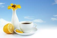 Taza de té con el limón Foto de archivo libre de regalías