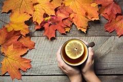 Taza de té con el limón a disposición, hojas de otoño coloridas en el tablero de madera Todavía de la caída vida, estilo del vint Imágenes de archivo libres de regalías