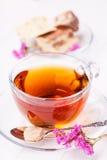 Taza de té con halva Imágenes de archivo libres de regalías