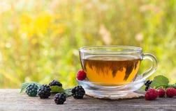 Taza de té con la frambuesa y la zarzamora en fondo del prado Foto de archivo libre de regalías