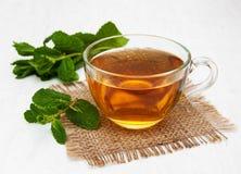 Taza de té con la menta Fotos de archivo libres de regalías