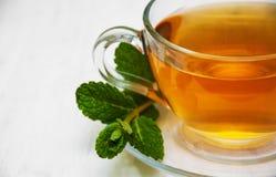 Taza de té con la menta Imagen de archivo