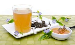 Taza de té con la miel y las flores Imágenes de archivo libres de regalías