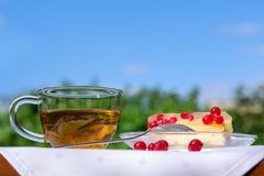 Taza de té con la torta sabrosa en la tabla en jardín Foto de archivo libre de regalías
