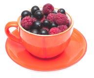 Taza de té con las bayas Imagen de archivo