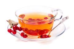 Taza de té con las bayas de una guelder-rosa Foto de archivo
