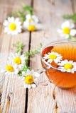 Taza de té con las flores de la manzanilla foto de archivo
