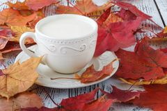 Taza de té con leche inglés en la tabla blanca con las hojas de arce Fotos de archivo libres de regalías