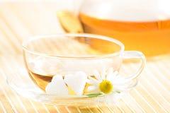 Taza de té con té de manzanilla herbario Fotografía de archivo