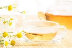 Taza de té con té de manzanilla herbario Imágenes de archivo libres de regalías