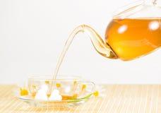 Taza de té con té de manzanilla herbario Imagenes de archivo