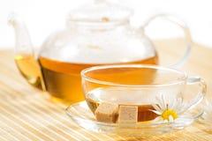 Taza de té con té de manzanilla herbario Fotos de archivo
