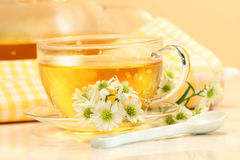 Taza de té de cristal con té herbario Fotos de archivo libres de regalías