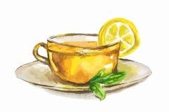 Taza de té de la acuarela Fotografía de archivo libre de regalías