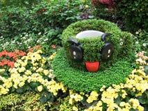 Taza de té de la flor Imagenes de archivo